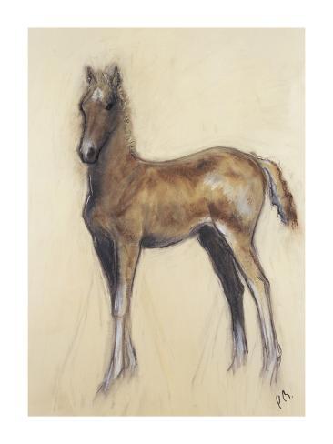 The Foal Premium Giclee Print