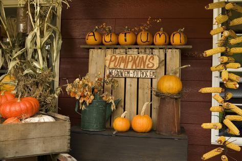 Autumn Harvest III Photographic Print
