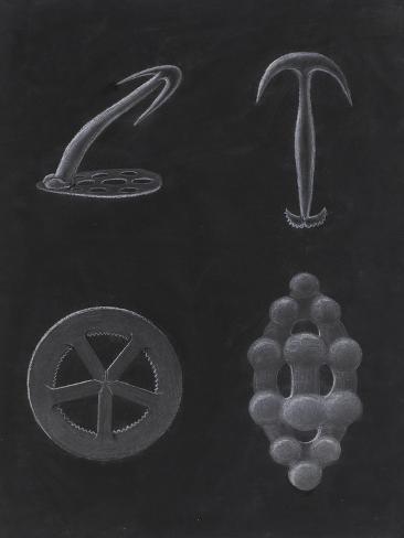Crustacea Giclee Print