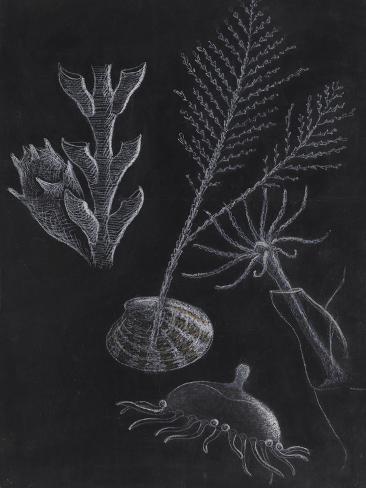 Untitled Giclee Print
