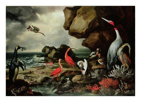 A Penguin, a Pair of Flamingoes, and Other Exotic Birds, Shells, and Coral on the Shoreline Giclee Print