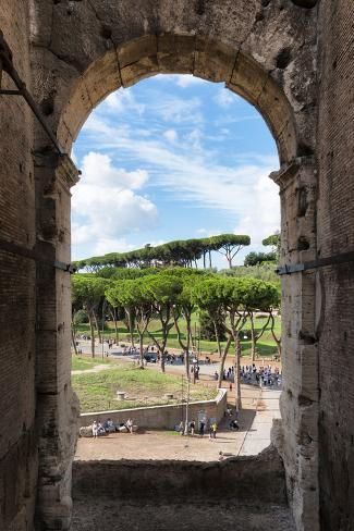 Dolce Vita Rome Collection - Colosseum Arches II Photographic Print