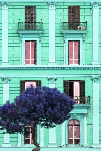 Dolce Vita Rome Collection - Coral Green Building Facade II Photographic Print