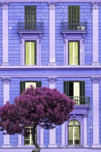 Dolce Vita Rome Collection - Purple Building Facade II Photographic Print