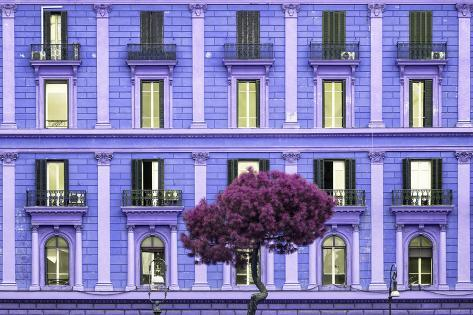 Dolce Vita Rome Collection - Purple Building Facade Photographic Print