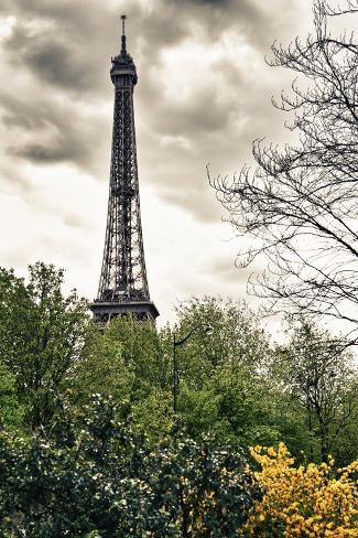 The Eiffel Tower - Paris - France Photographic Print