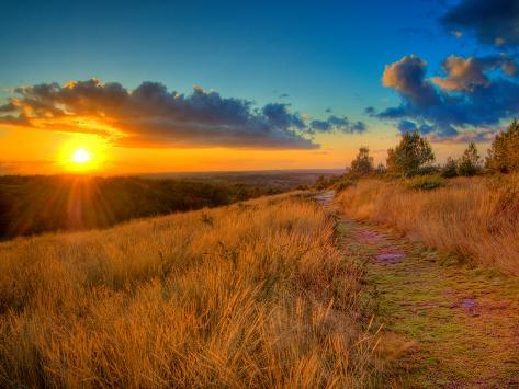 Sunset in the French Countryside Photographic Print