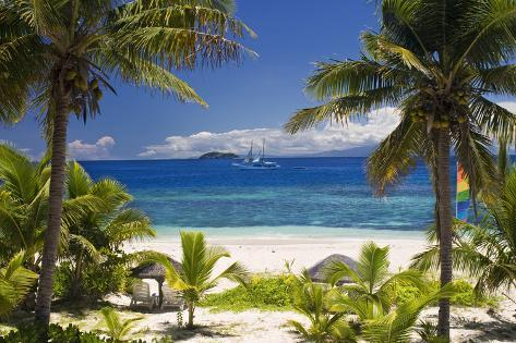 Sail Boat Seen through Palm Trees, Mamanuca Group Islands, Fiji Photographic Print