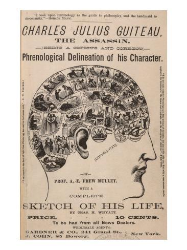 Image result for guiteau phrenology paintings