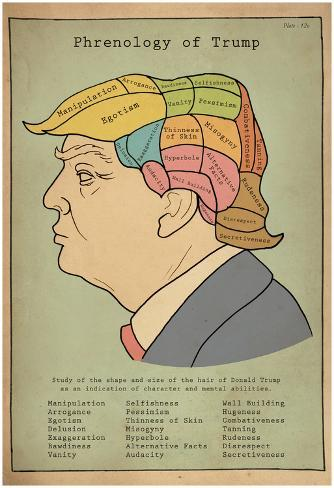 Phrenology Of Trump Pôster