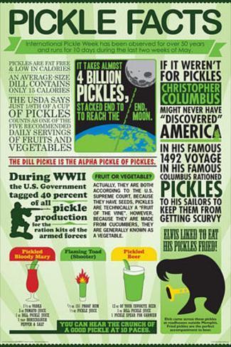 Pickle Facts Chart Juliste