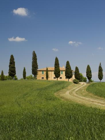 Countryside Near Pienza, Val D'Orcia, Siena Province, Tuscany, Italy, Europe Photographic Print