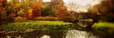 Pond in a Park, Central Park, Manhattan, New York City, New York State, USA Photographic Print