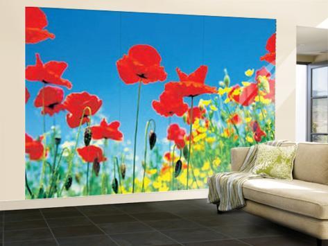 Poppy Field Huge Wall Mural Art Print Poster Wallpaper Mural