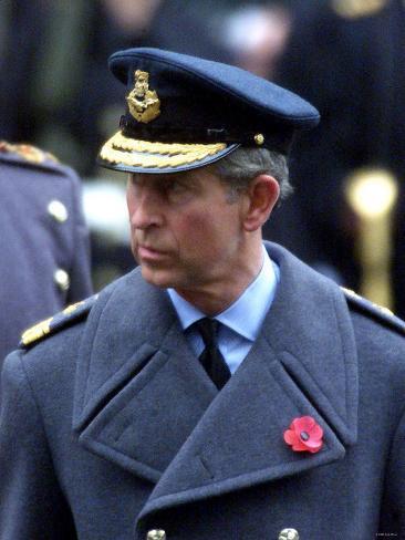 Prince Charles, November 2002. Remembrance Day Parade at Whitehall, London Photographic Print