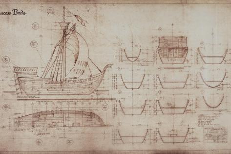 Princess Bride the Movie: Ship Illustration Stampa artistica
