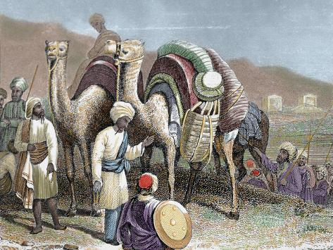 Silk Road, Caravan of Camels Resting, Antioch Photographic Print