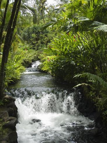 Tabacon Hot Springs, Volcanic Hot Springs Fed from the Arenal Volcano, Arenal, Costa Rica Photographic Print