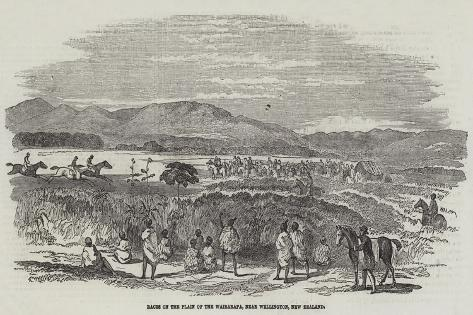 Races on the Plain of the Wairarapa, Near Wellington, New Zealand Giclee Print