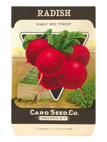 Radish Seed Packet Taidevedos