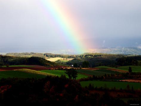 Rainbow Photographic Print
