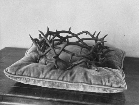 Crown of Thorns Worn by Actor in the King of Kings from Prop Collection of Cecil B. Demille Photographic Print