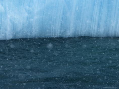 Snow Flakes Drifting Past a Blue Iceberg Photographic Print