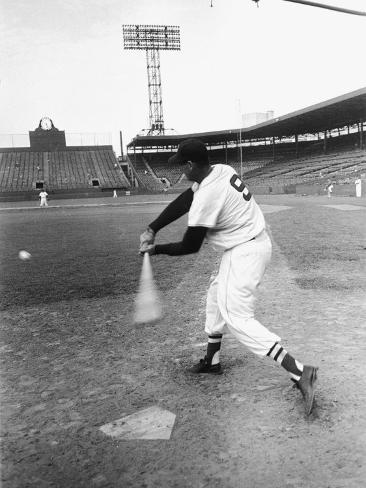 Ted Williams Taking a Swing During Batting Practice Premium Photographic Print