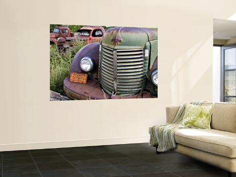 Rusted Pick-Up Trucks Wall Mural