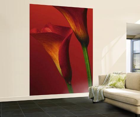 Red Calla Lilies Wall Mural Wallpaper Mural