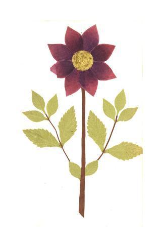 Red Flower on Leafy Stem Art Print