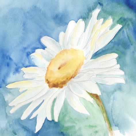 Daisy Sunshine I Stampa artistica