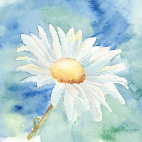 Daisy Sunshine II Stampa artistica