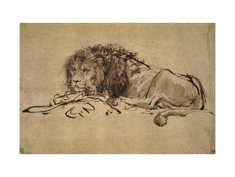Lion Resting, Turned to the Left Giclee Print