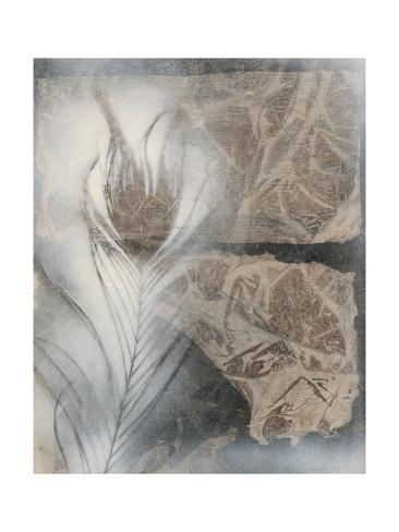 Feather & Stone II Premium Giclee Print