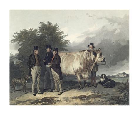 Four Men With A Bull Premium Giclee Print