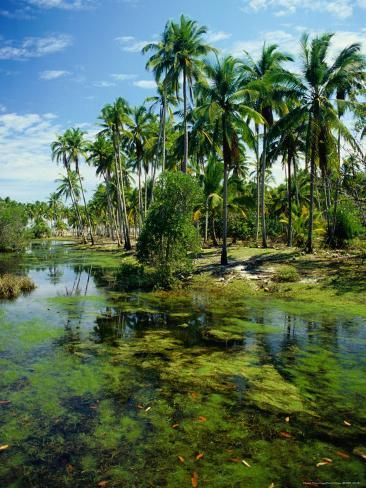 Village and Lagoon, Marang, Terengganu, Malaysia Photographic Print
