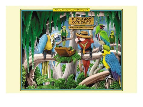 A Company of Parrots Konstprint