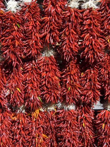 Chillies for Sales, Santa Fe, New Mexico, United States of America, North America Photographic Print