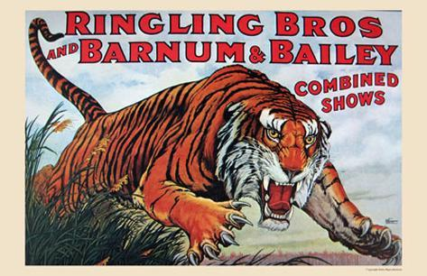 Ringling Bros and Barnum & Bailey Framed Art Print