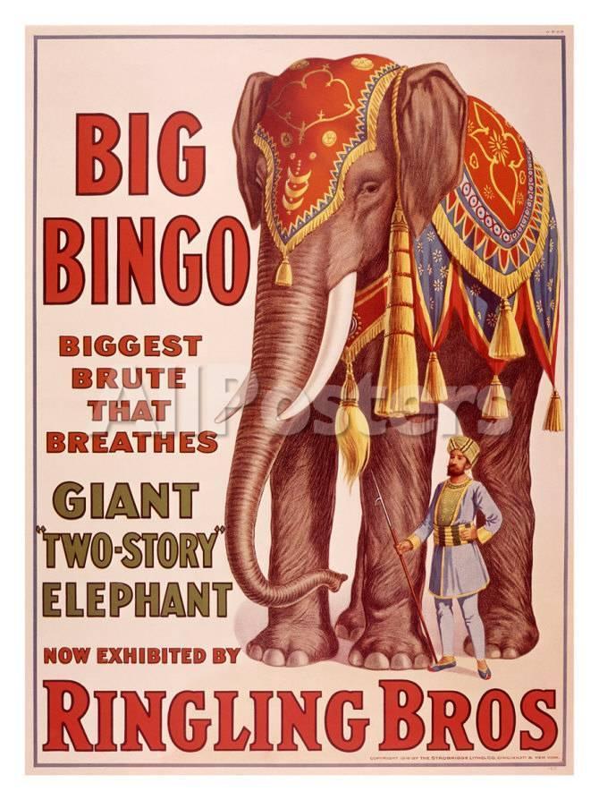Ringling Brothers Circus Big Bingo The Elephant Giclee Print At