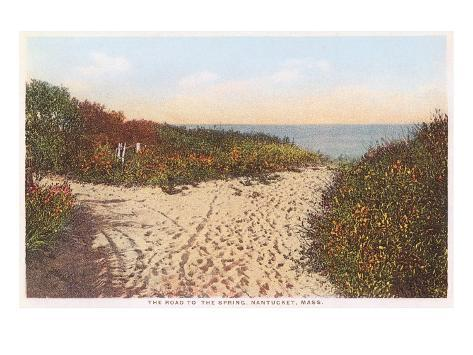 Road to the Spring, Nantucket, Massachusetts Art Print