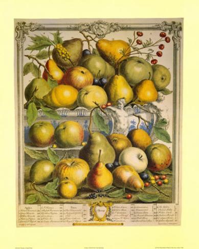 Fruits of the Season Spring Art Print
