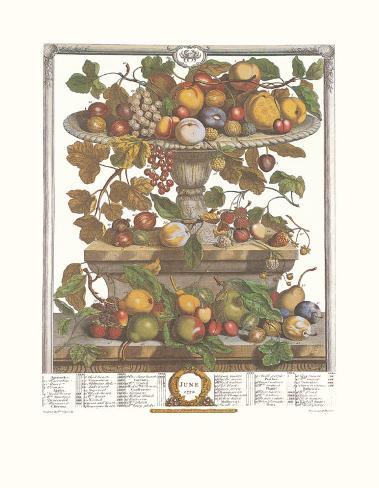 Twelve Months of Fruits, 1732, June Art Print