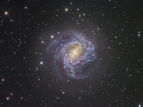 The Southern Pinwheel Spiral Galaxy M83 Photographic Print