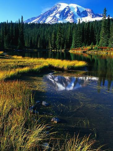 Mount Rainier and Reflection Lakes Photographic Print