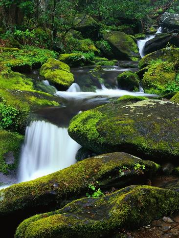 Stream Cascading Down Moss-Covered Rocks Photographic Print