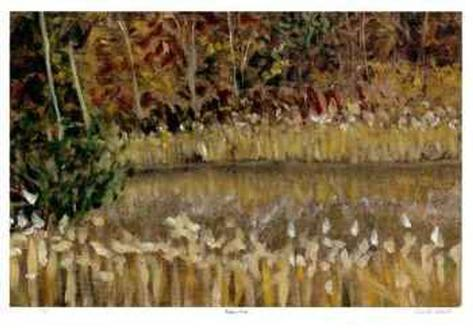 Hidden Pond Collectable Print