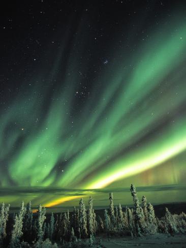Aurora Borealis or Northern Lights, Yukon. Photographic Print