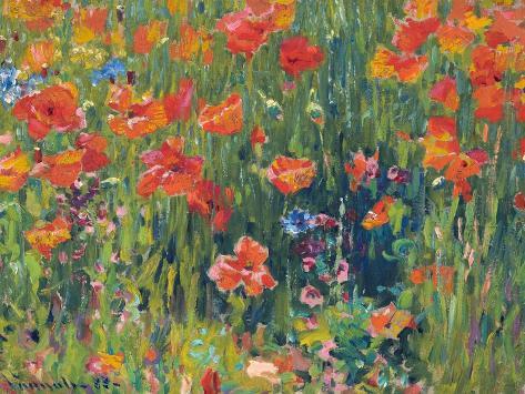 Poppies, 1888 Lámina giclée